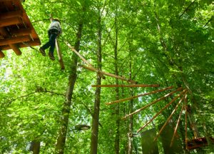 The experience on a ropes course with risk taking paid off big-time for this executive. Risk-taking often does
